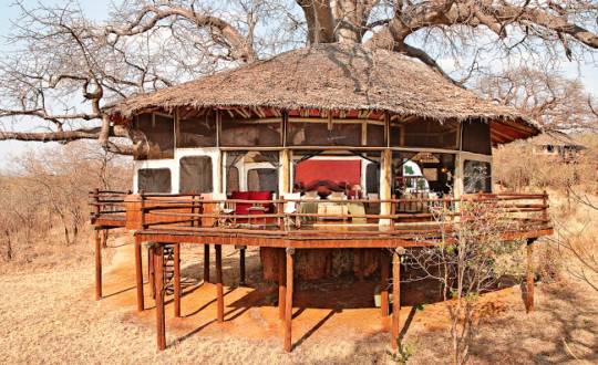 Tarangire Treetops - Glampingguide.co.uk
