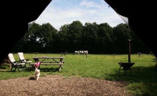 Landgoed Volenbeek - Glampingguide.co.uk